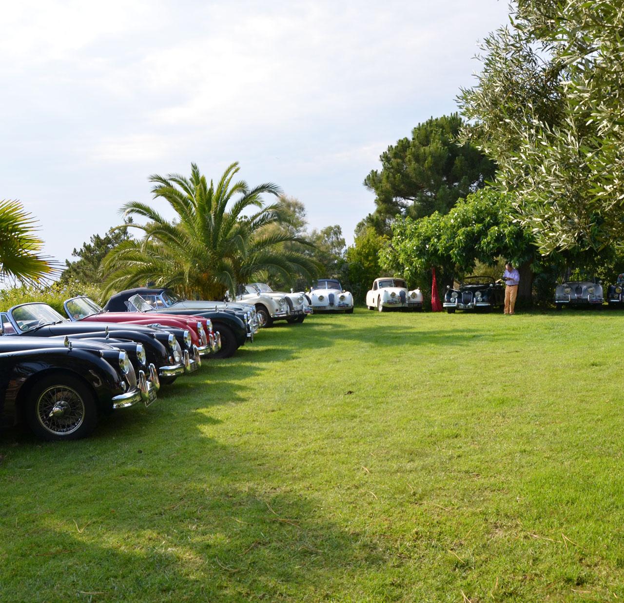 Amicale-jaguar-de-france-évènement-Rassemblement-jaguar-anciennes